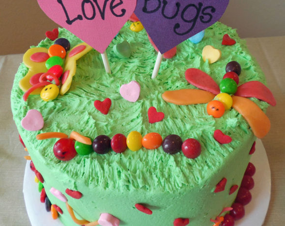 Love Bugs Cake YOU can Make