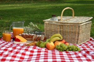 Five Perfect Picnic Surprises